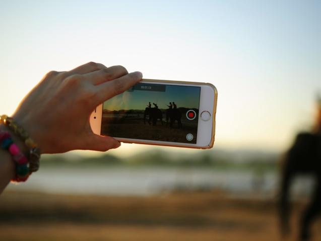 picture-smartphone-elephants-woman-88476